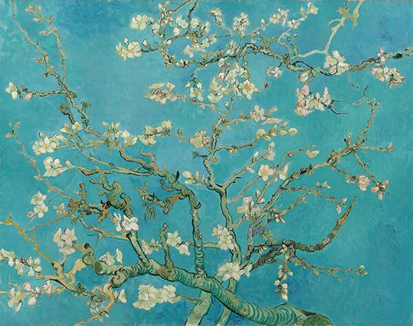 Sắc xanh lơ (baby blue) xuất hiện trên nền bức tranh Cây hạnh nhân nở hoa (Almond Blossom) của Van Gogh (1890)