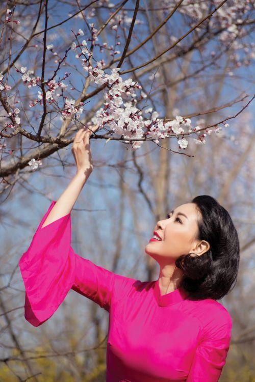 Áo dài và hoa anh đào - Hình ảnh 3
